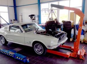 MustangMotorRep